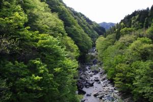 矢納地区・三波石峡