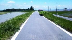 ゆーゆーランド 自転車ロード
