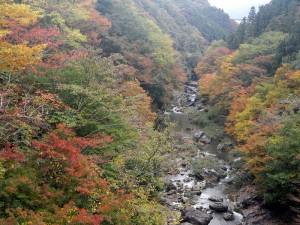 三波石峡紅葉
