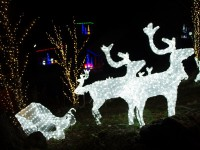 城峯公園ライトアップ